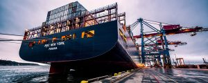 Cargo ship with MSC New York Panama printed on the stern